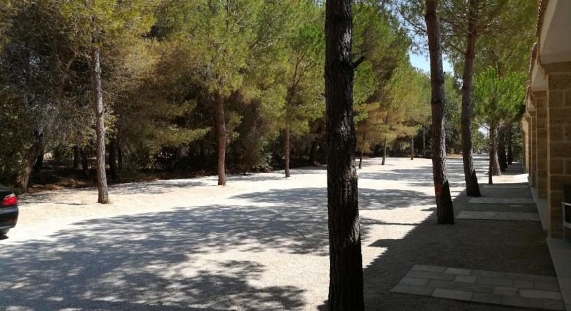 Masseria Relais Santa Teresa | Foto 9
