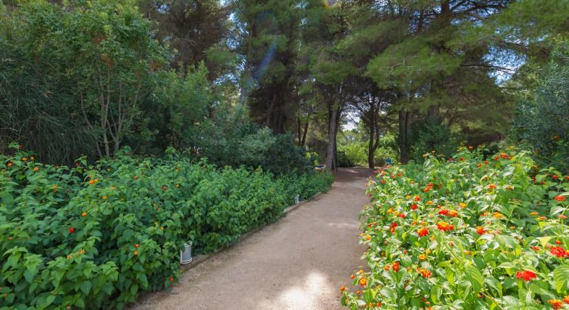 Vivosa Apulia Resort | Foto 2
