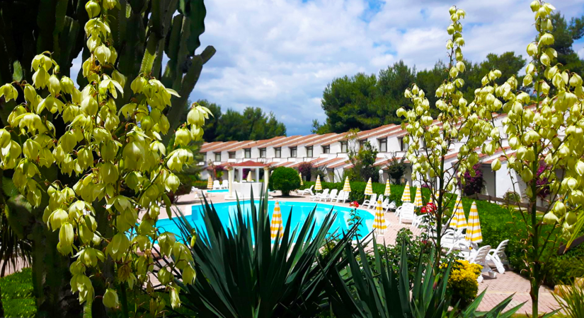 Porto Kaleo Resort | Foto 2