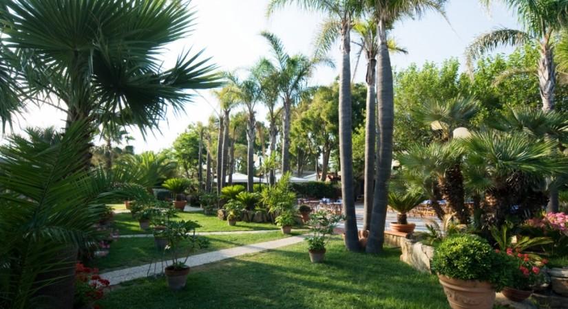 Cilento Resort Velia | Foto 3