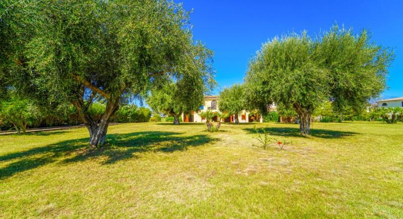 Villaggio Baia Della Rocchetta | Foto 3