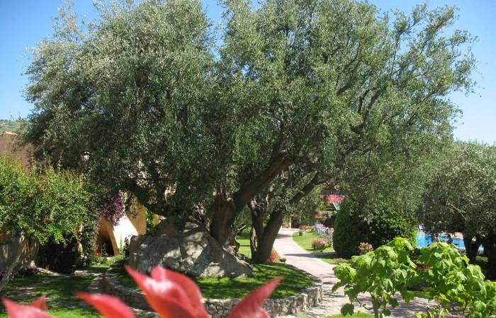 Villaggio L'Olivara Residence