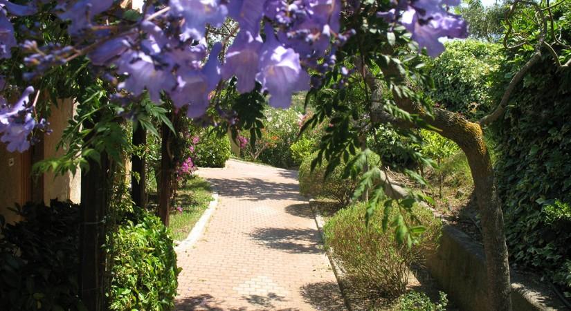 Villaggio L'Olivara Residence | Foto 5