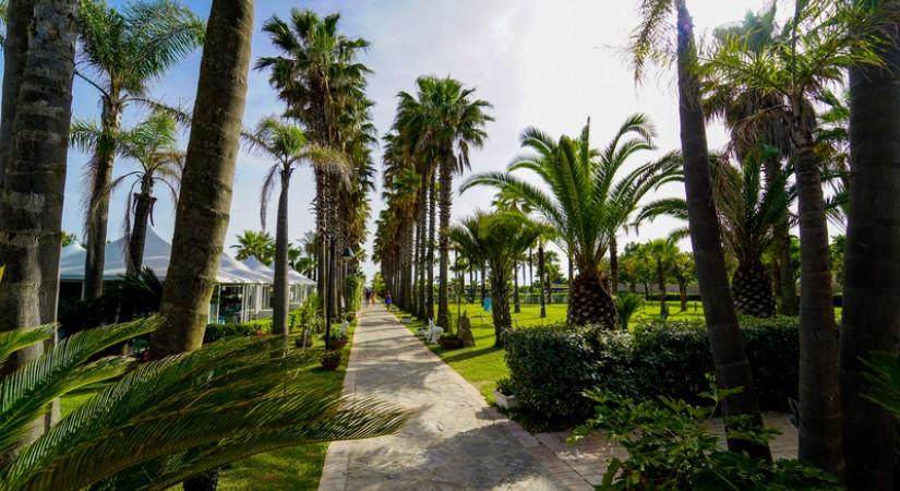 Cilento Resort Velia | Foto 20
