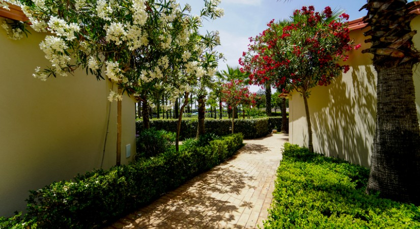 Cilento Resort Velia | Foto 26